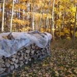 wood heat